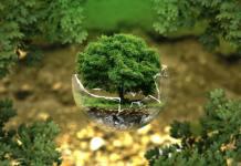 medioambiente sostenibilidad