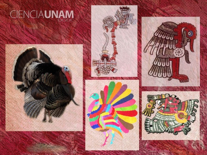 UNAM guajolote