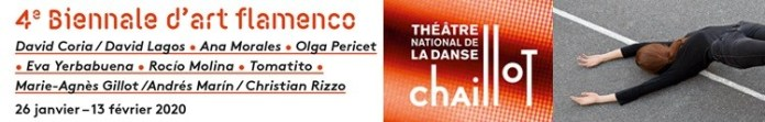 banner bienal flamenco paris ENE2020