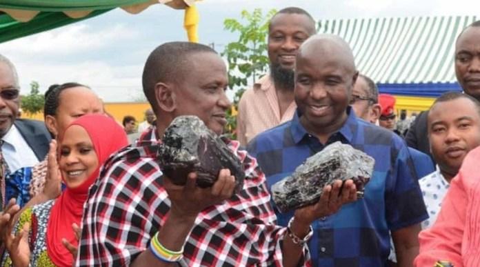 Saniniu Laizer sostiene las dos grandes piedras de tanzanita que ha descubierto - Ministerio tanzano de Minerales