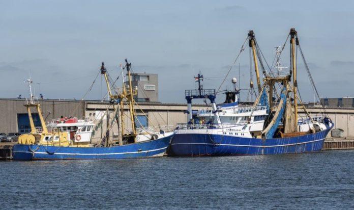 Barcos de pesca de Holanda en el puerto de Vlissingen, Países Bajos