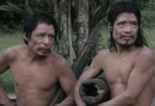 Estos dos hombres piripkuras,Tamandua y Baita, son unos de los últimos supervivientes de su pueblo. Su territorio está protegido por las ordenanzas de protección territorial, pero corre el riesgo inminente de ser invadido por madereros y acaparadores de tierras.