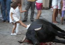 toros infancia