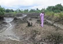 La contaminación en el Delta del Níger no mejora, a pesar de las promesas de la Shell de limpiar la zona. © AI