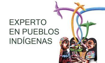 UC3M experto pueblos indigenas