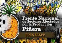 frente-productores-de-piña-costa-rica