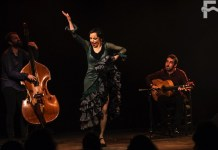 Rosario Toledo por seguiriyas. Sala Paúl, ciclo De la Frontera. Foto J. Fergo