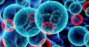 Nuevo potencial tratamiento para la leucemia