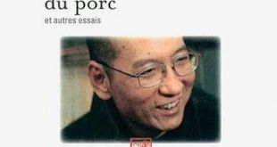 El Premio Nobel Liu Xiaobo sale de la cárcel gravemente enfermo