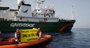 Greenpeace pide santuarios marinos para biodiversidad de los océanos