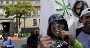 Activistas mexicanos celebran la autorización de la marihuana