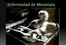 Mercurio-Minamata-Andersen
