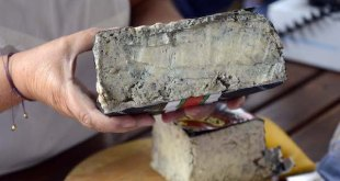 Cabrales: 11.000 euros por un queso de 2,5 kilos