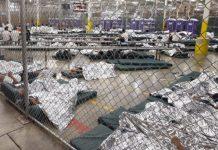 Niños enjaulados en la frontera EEUU con México