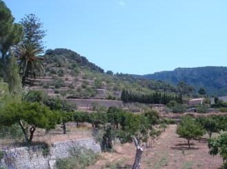 Palma 2013 155