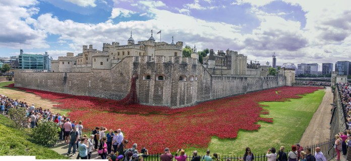 Tower of London Poppies8