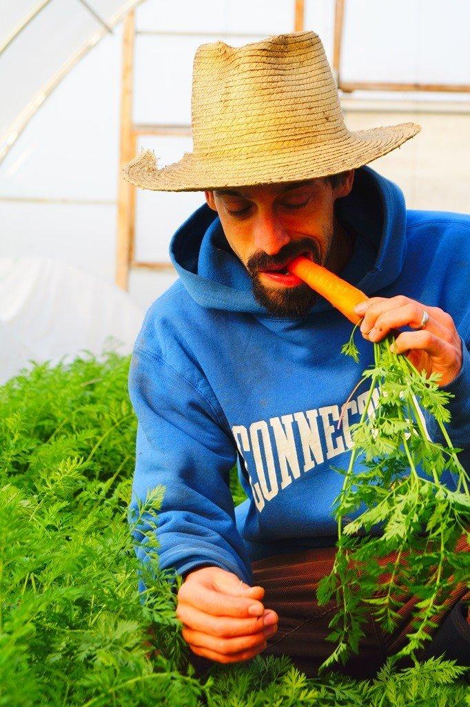 Dan enjoying a freshly harvested carrot