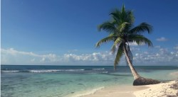 Piasek, ocean, palma i błękitne Niebo :)