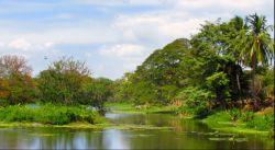 Bogaty świat małych wysepek na Jeziorze Nikaragua