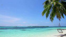 Karaibska plaża, hamak w cieniu palmy i fale dotykające stóp :)