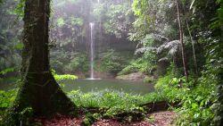 Łagodna burza, wodospad i dżungla!