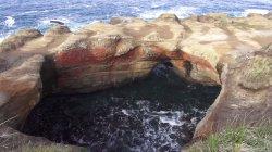Zadziwiająca  morska waza :)
