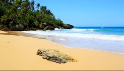 Plaża  Preciosa w Dominikanie