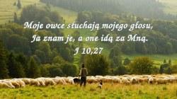 Czyny, których dokonuję w imię mojego Ojca, świadczą o Mnie!