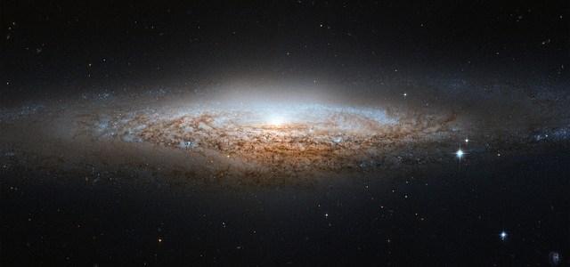 Nauka – jej istnienie wskazuje na Stwórcę!