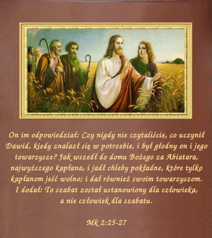 W Królestwie reguły są  dla człowieka, a nie odwrotnie!