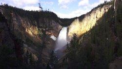 Ptaki wodospadu rzeki Yellowstone