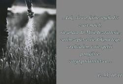 Nie samym chlebem żyje człowiek, lecz każdym słowem, które pochodzi z ust Bożych