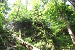 Spacer w Górach Opawskich