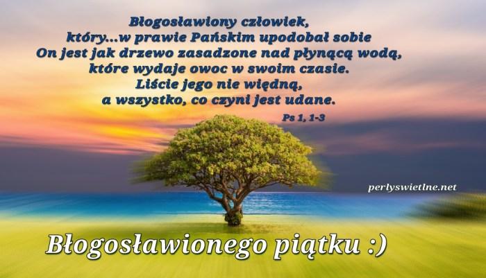 Jak drzewo nad wodą (BŁ)