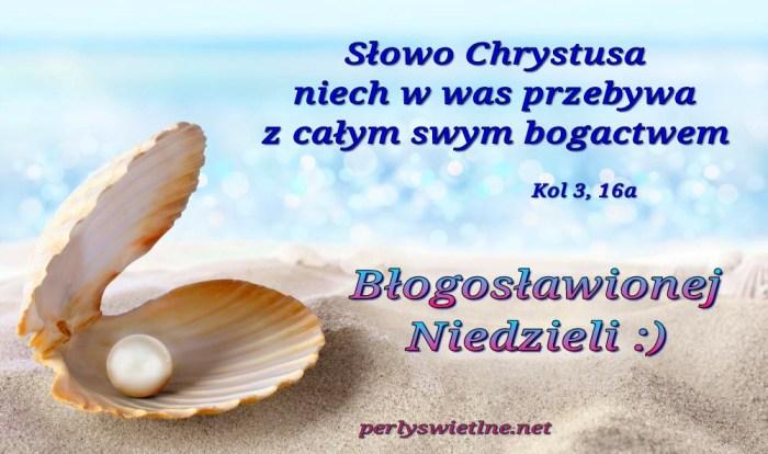 Bogactwo Słowa Chrystusa (BŁ)