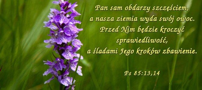 Pan sam obdarzy szczęściem, a nasza ziemia wyda swój owoc.