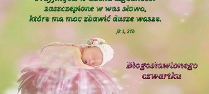 Przyjmijcie Słowo w duchu łagodności (BŁ)
