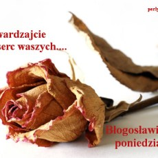 I dam wam serce nowe…