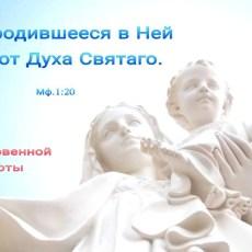 Родившееся в Ней от Духа Святого (БЛ)
