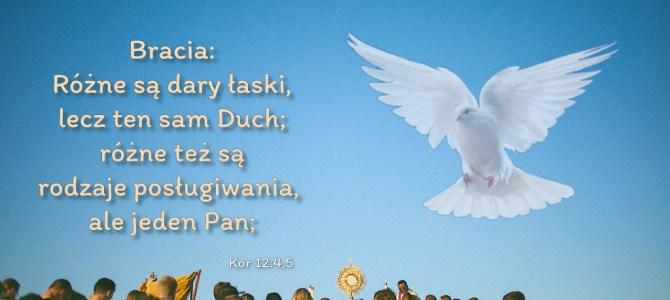 Bracia: Różne są dary łaski, lecz ten sam Duch; różne też są rodzaje posługiwania,  ale jeden Pan;
