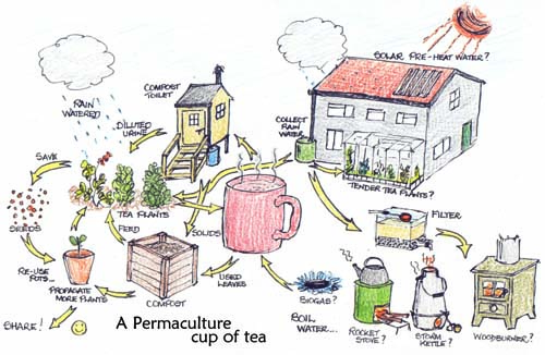 Cicli di energie elementi permacultura