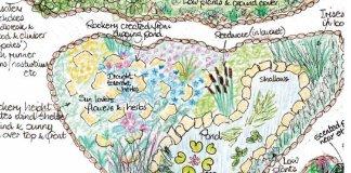 Il design in permacultura Aranya