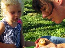 Permacultura educazione a bambini