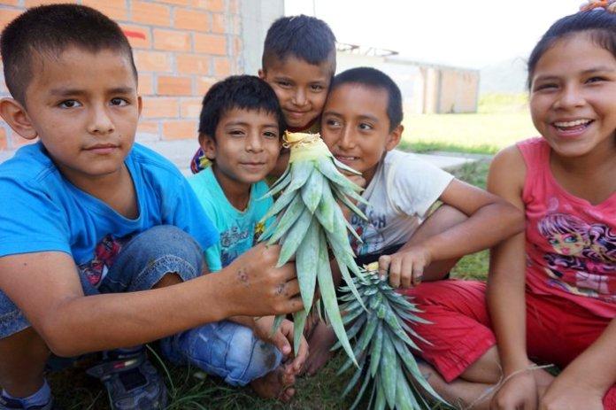 permacultura peru comunita