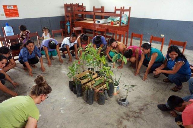 permaverde permacultura sociale