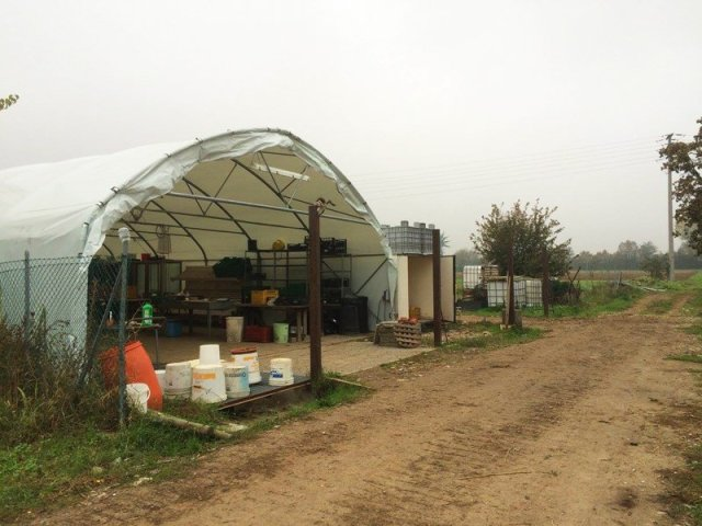 arvaia polytunnel