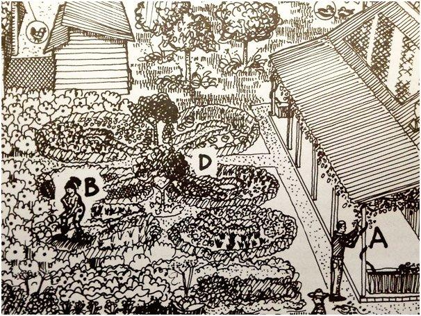 pianificazione permacultura