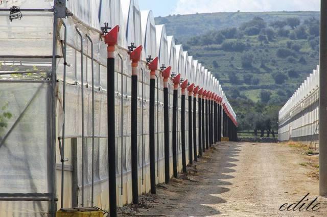 serre sicilia filo di paglia