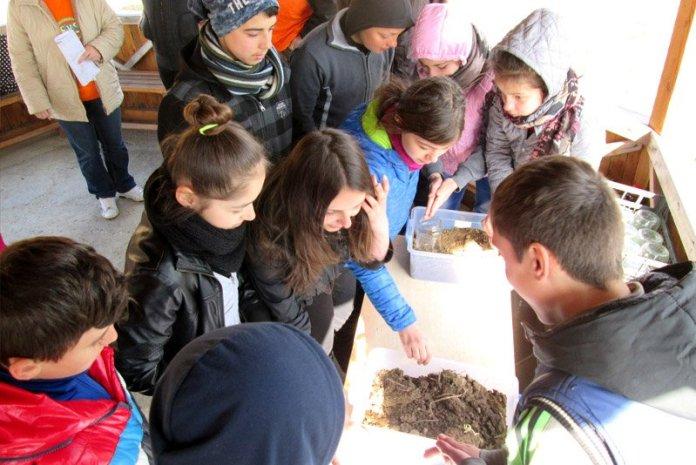 Bambini suolo permacultura romania