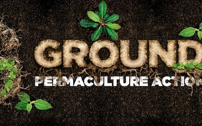 Grounded Permaculture Action Party (Inc.)